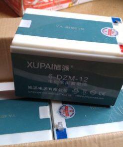 Ắc Quy xe đạp điện XuPai