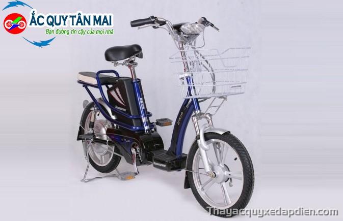 Thay ắc quy xe đạp điện Bridgeston