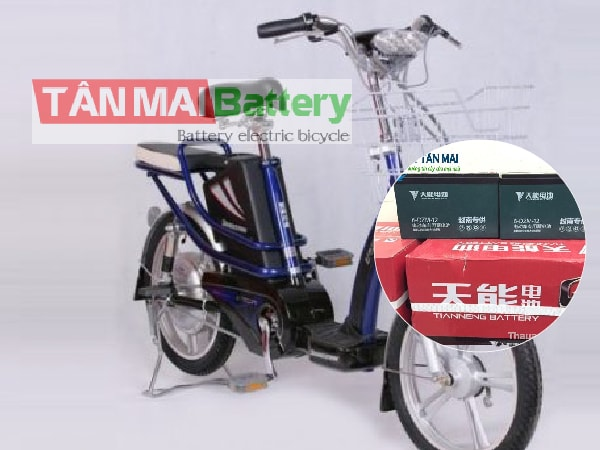 Ắc quy xe đạp điện Bridgestone