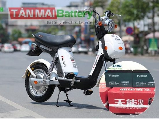 thay Ắc quy xe đạp điện Nijia