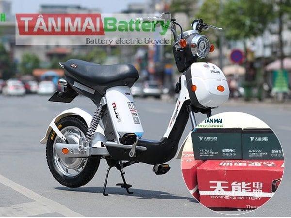 Thay ắc quy xe đạp điện Nijia 12Ah