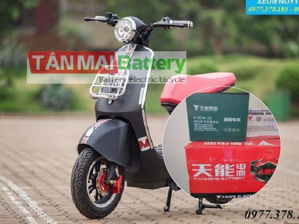 Thay ắc quy xe đạp điện tại Hải Phòng
