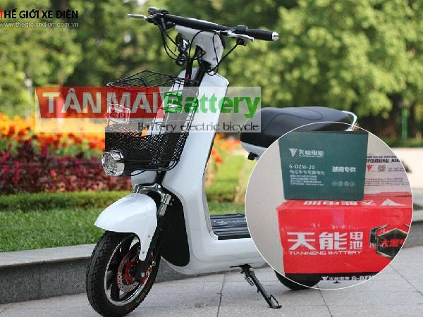 Ắc quy xe đạp điện Mocha