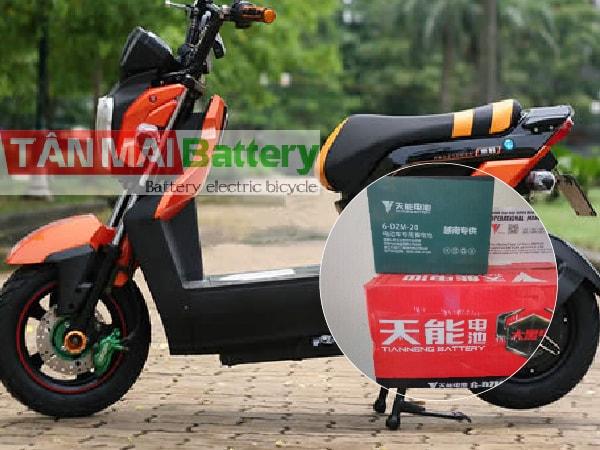 Ắc quy xe đạp điện Zoomer