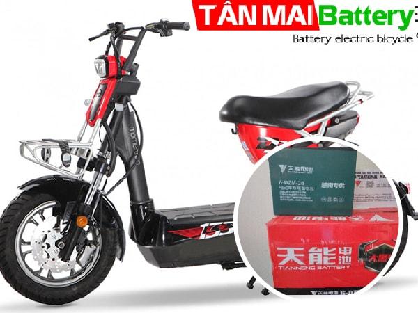 Ắc quy xe đạp điện 133DS